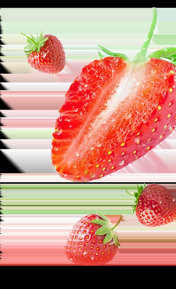 Fruit 'n Yogurt<sup>™</sup> Snacks